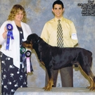 UKC Grand Champion Royal's Zeus Vom Rouk Haus