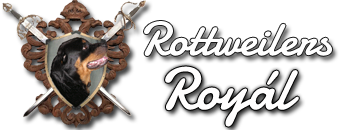 Rottweilers Royal